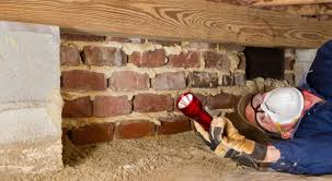 Image result for take advantage of termite inspection