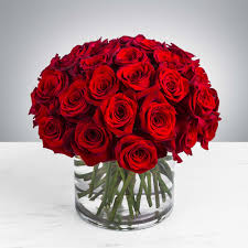three dozen red roses by bloomnation