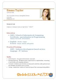 Sample Resume Pdf Delectable Examples Of Cv Pdf Canreklonecco