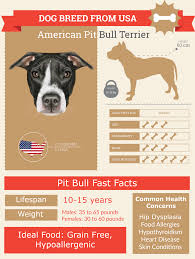 Pitbull Age Chart Blue Nose Pitbull Lifespan Complete Health Guide Infographic