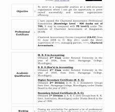 Cv Format For Articleship Resume Hirnsturm Templates Cs Training