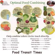 Food Transit Time And Food Combining For Optimal Digestion