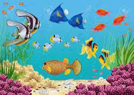 Plant aquarium foto royalty free immagini immagini e archivi