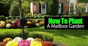how to plant a flower garden. How To Plant A Mailbox Garden \u2013 Video Flower S