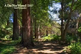 large size of santa barbara botanic garden cost plant list events hours membership walk map
