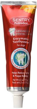 petrodex enzymatic dog toothpaste best dog teeth cleaning products