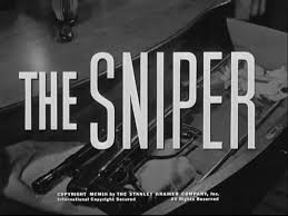 the pain of a civil war ldquo the sniper rdquo analysis essay yereemchun ldquothe sniperrdquo by liam o flaherty is a short story about a young republican sniper in the midst of battle during the early days of the irish civil war
