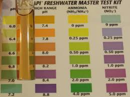 Master Test Kit Chart Studious Api Test Kit Color Chart 2019