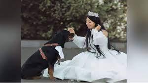 بلاغ يطالب بمحاكمة البلوجر هبة مبروك لنشرها خبر زواجها من كلب