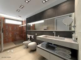 bathroom minimalist design. Neutra Gray Masculine Bathroom Minimalist Design 2