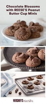 17 Best images about Cookies on Pinterest