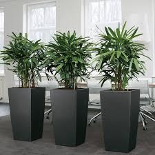 Vaso fioriera cubico premium 40x40 solo vaso lechuza decor home
