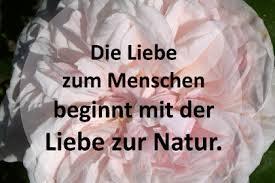 Alle Beiträge Zu Zitate Natur Ruhe Auf Dieser Seite Bild Zitat