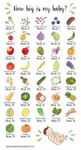 How Big Is My Baby Fruits And Vegetables Infographic Baby