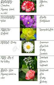 Month Flowers Chart Gift Ideas For Family Birth Month Flowers Chart