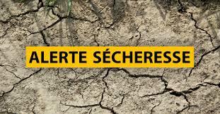 Alerte sécheresse : Arrêté du 29 Mai 2020 -