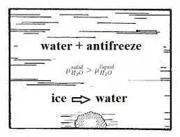 Water Potential Equation How Antifreeze Works Carnotcycle