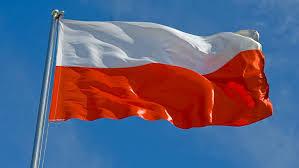 Znalezione obrazy dla zapytania flaga polski ruchoma