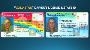 Hawaii Obstacles Public Gold Star Getting The Radio Conversation License Driver's