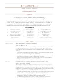 24 Award Winning Ceo Resume Templates Wisestep