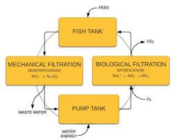 Recirculating Aquaculture System Or Ras Aquaculture Id