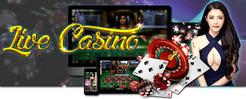 Image result for Live Casino PNG