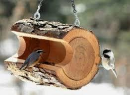 Богат избор от професионално подбрани висококачествени хранилки и поилки за птици. Eto Kak Da Napravim Razlichni Vidove Hranilki Za Ptici V Domashni Usloviya Baubau Bg
