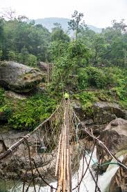nongriat and the living root bridges of meghalaya lost purpose photo essay of nongriat and the living root bridges of meghalaya a wobbly