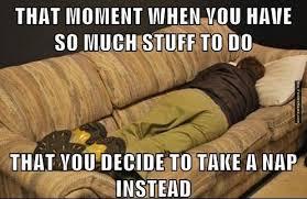 funny-memes-student-life.jpg via Relatably.com