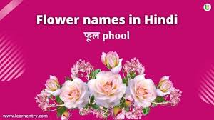 flower names in hindi english