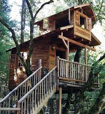 tree house plans for adults. Various Tree Houses To Live In For Your Inspirations Cool High Idea With Two Floor Living Space Featured Balcony And Open House Plans 3 Trees Coo Adults