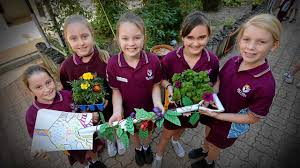 Bli Bli schoolkids dig deep for design inspiration | The Courier Mail