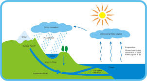 water cycle essay water cycle essay 5 paragraphs