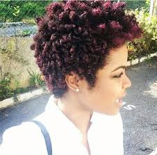 Short Natural Hair Style For Black Women 101 short hairstyles for black women natural hairstyles short 2011 by wearticles.com