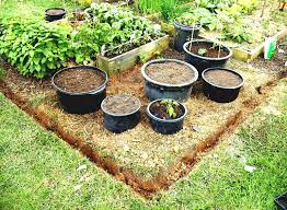 Small Picture Small Vegetable Garden Design For House Making Guide Ideas Photos