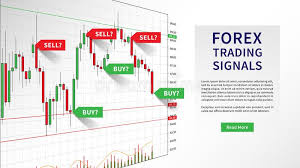 Forex Trading Indicators Vector Illustration Stock Vector