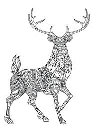 Coloring Pages Forest Animals Forest Animals Coloring Pages Irescue Club