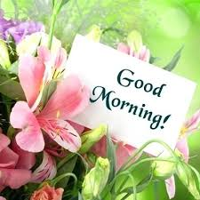 morning flowers flowers romantic morning good images es wishes good morning flowers images free