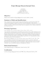 Objective Statements For Resumes Examples Resume Creator Simple Source Amazing Mission Statement Resume