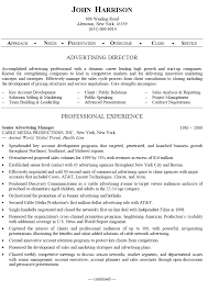 Senior Advertising Manager Sample Resume 11 Ad Sales Resume Format For Sales  Executive Best Solutions Of Advertising