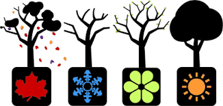 Image result for FOUR SEASONS TREES CLIPART