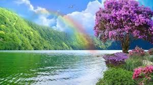 rainbow rainbow nature river flowers hd wallpaper landscape