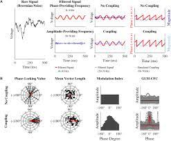 Frontiers | Quantification of Phase-Amplitude Coupling in Neuronal  Oscillations: Comparison of Phase-Locking Value, Mean Vector Length,  Modulation Index, and Generalized-Linear-Modeling-Cross-Frequency-Coupling