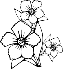 Pretty Flowers Coloring Pages Free Printable Flower For Kids