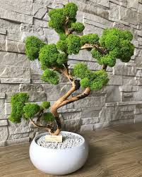 🌳nasze autorskie chrobotkowe drzewko🌳 #chrobotek #chrobotekreniferowy  #mech #drzewko #naturalne #pr… | Moss decor, Flower arrangements simple,  Succulent terrarium
