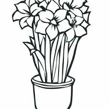Small Picture Coloring Pages Of Lily Flowers Coloring Pages