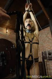 BDSM Download New Premium Porn From DepFile