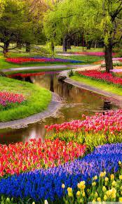 Garden HD Wallpapers on WallpaperDog
