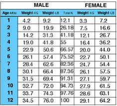 Doberman Growth Chart Female 69 Uncommon Golden Weight Chart
