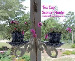 diy tea cup sconce planter